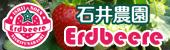 link_ichigo.jpg